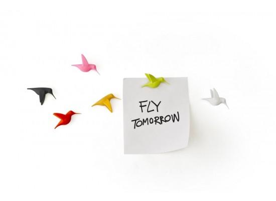 Magneti za sporočila - kolibrij (6 kos)