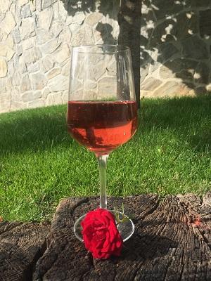 privošči-si-vino-tega-poletja2JPG – kopija